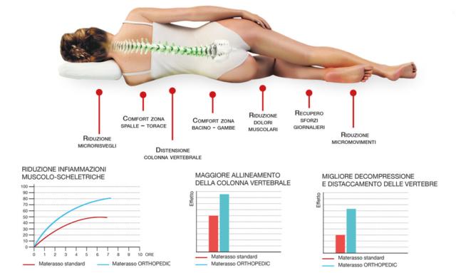 Permaflex - Lamanna Sabato - Absolute Orthopedic